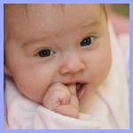 zoe - calm babies
